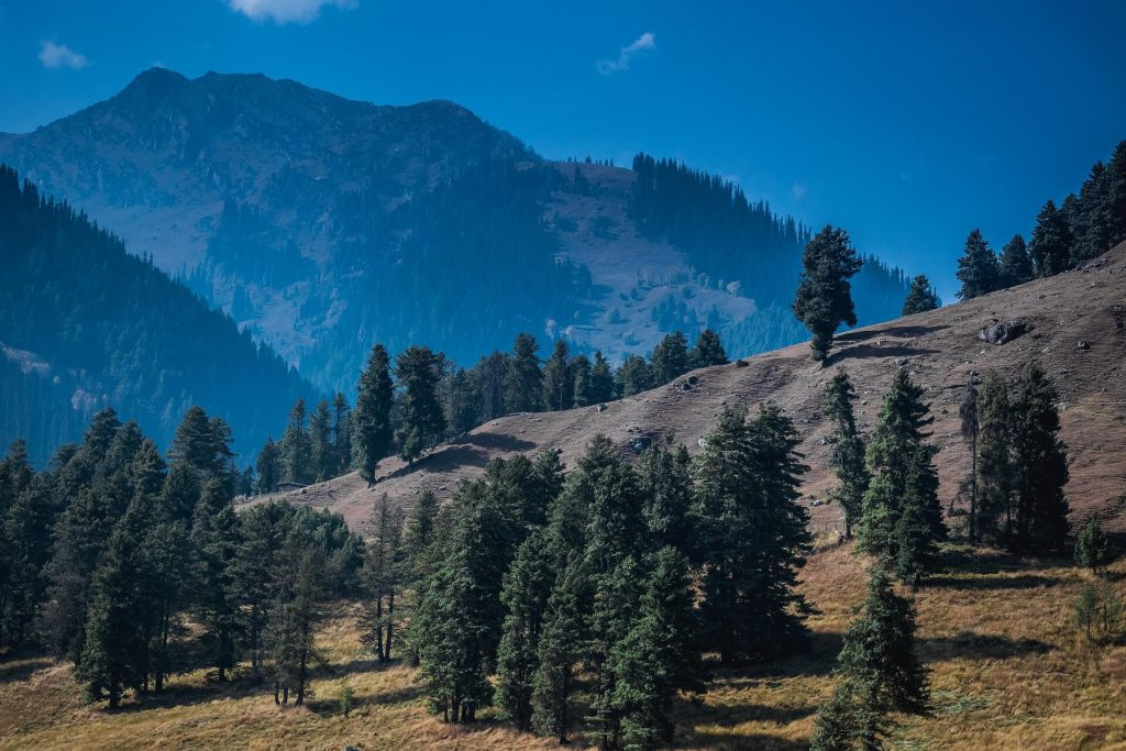 Must Visit Hill Stations in India